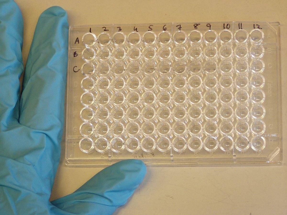 Enzyme-Linked ImmunoSorbent Assay[ELISA]